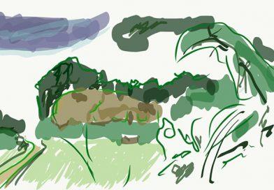 Wanderung durch den Doberg bei Bünde