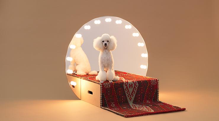 Bild: Konstantin Grcic, Architecture for dogs: Paramount, 2012, Selbstbaumöbel, Podest, Spiegel, Teppich, Glühbirnen, 79 × 42 × 90 cm, © Architecture for Dogs, Foto: Hiroshi Yoda