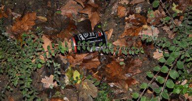 Verkehrsunfall unter Alkoholeinfluss - Unfallverursacher wirft Dose ins Gebüsch