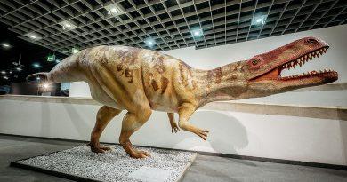Größter Raubsaurier Deutschlands enthüllt