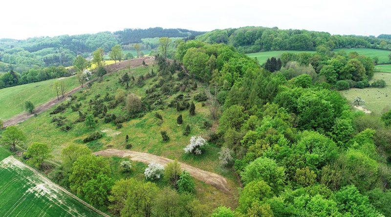 Luftbild des Naturschutzgebietes (NSG) Kleiner Selberg nach den durchgeführten Maßnahmen. Im Vordergrund ist die Wacholderheide und im Hintergrund die freigestellte Kuppe erkennbar.