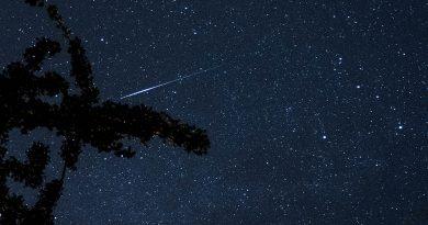 Die Perseiden bieten ihr jährliches Himmelsspektakel. Quelle: WetterOnline